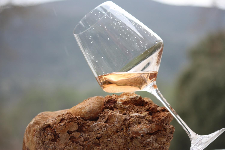 degustation-caveau de vente-ouvert-vins bio