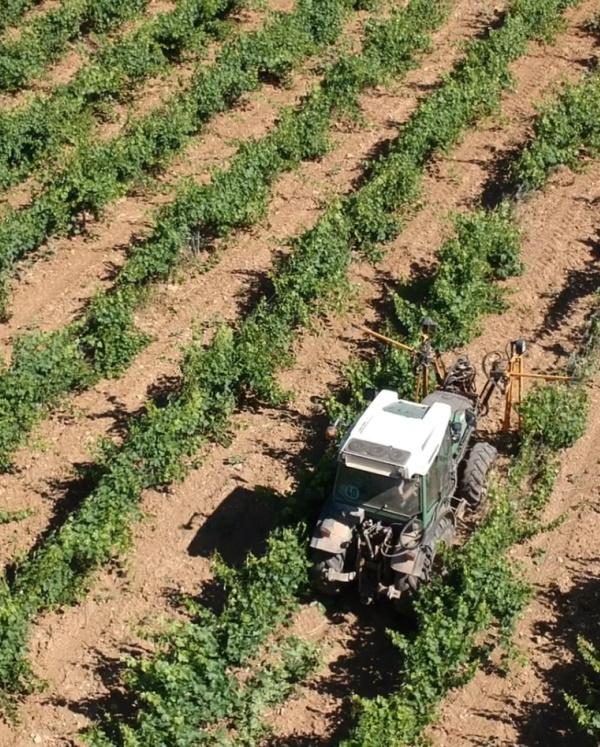 tracteur-travail de la vigne-domaine-vins bio